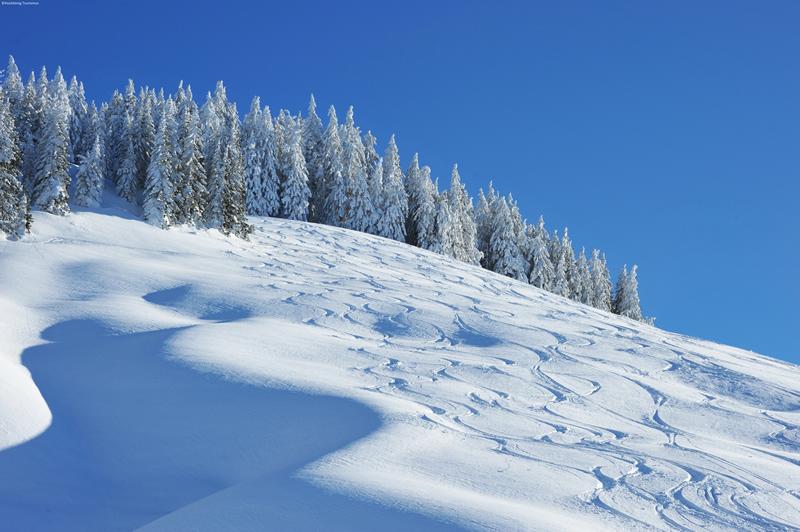 Haus Sion Maria Alm - Winter 2